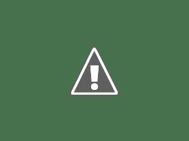 Pollock e gli Irascibili, dalla tela allo schermo allo Spazio Oberdan