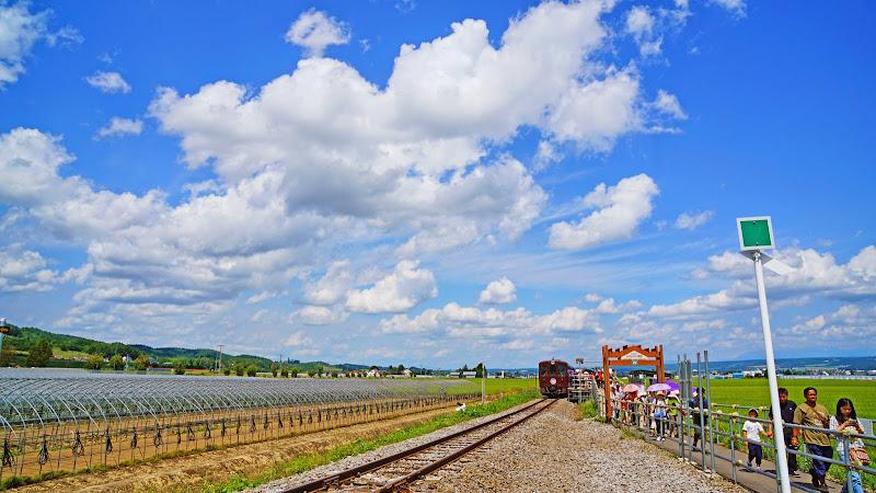 富良野 ラベンダー駅 写真1
