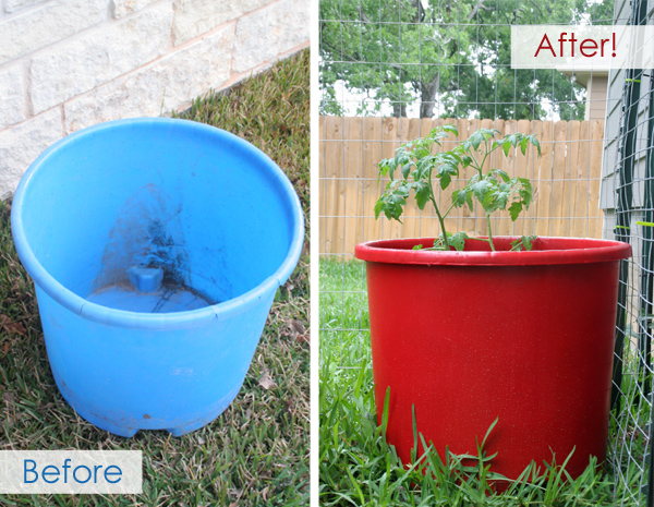 Red plastic tomato planter