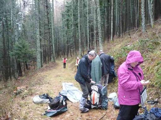 Dans la forêt entre Linthal et Obersengern