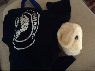 andrex puppy toy with Fisher FC t shirt over it
