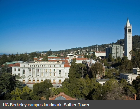 berkeley ewmba essays