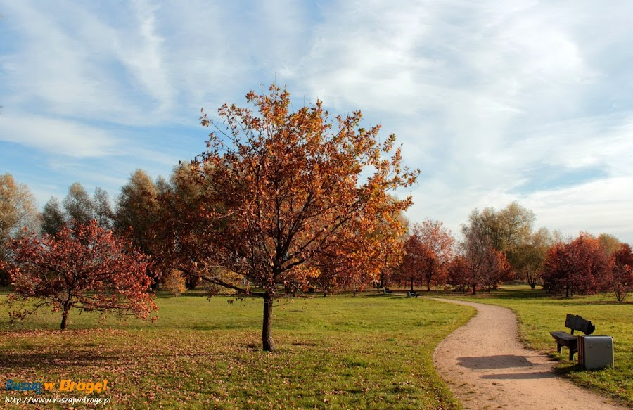 Park Reagana w Gdańsku - idealne miejsce na spacer