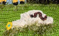 Crocheted Snake on a Crochet Rock with flowers & grass