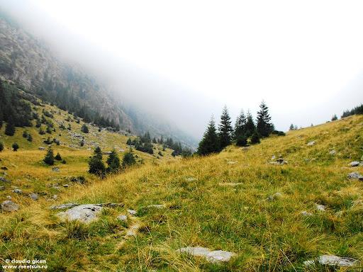 Valea Viştea ne aşteaptă învăluită în mister