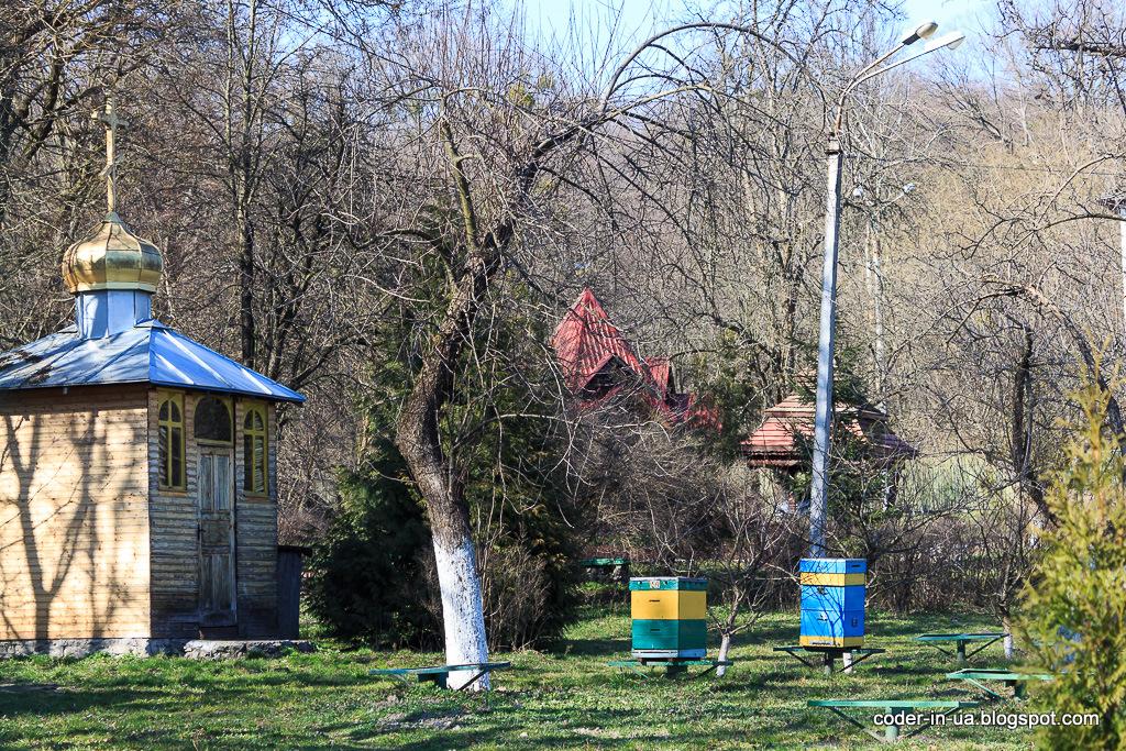 голосеевская пасека