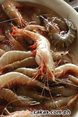 Pasayan (Shrimp)