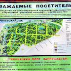 Черняевский лес апрель 2012