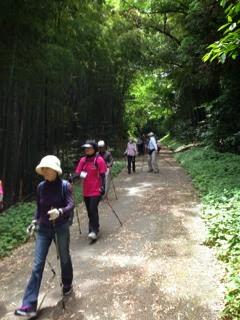 ノルディックウォーキングat千葉県茂原市鶴枝レイクウッズガーデンひめはるの里