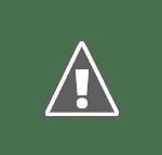 regii romilor Film cu proşti