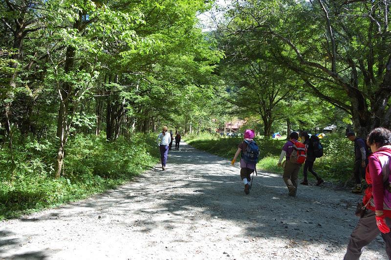徳澤の無料トイレの前の道