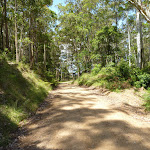 Walking along the road between Heaton Lookout and Tower (359444)
