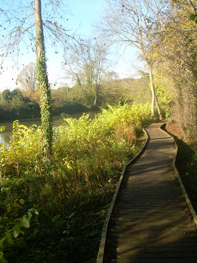 Nene boardwalk