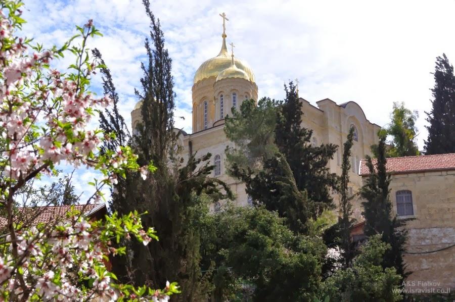 Подъем к Горненскому монастырю. Экскурсия в Горненский монастырь.  Гид в Израиле Светлана Фиалкова.