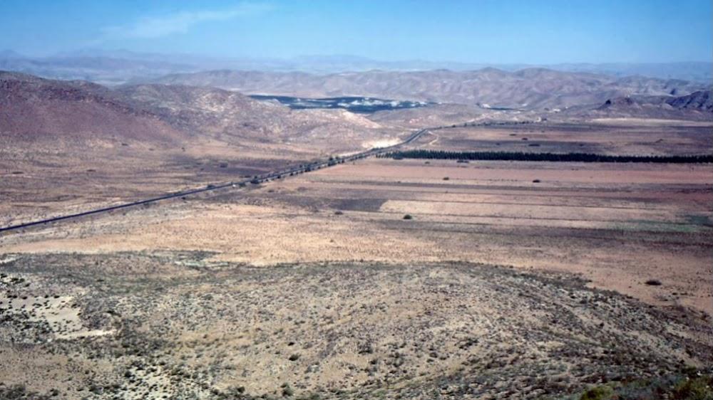 Eucalyptus plantations on the Mojácar-Huércal road, late 60s.