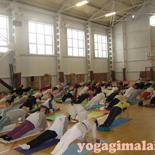 Городской семинар по йоге (Уфа, 2014)