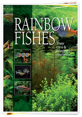 E-book Rainbowfishes