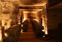 κόκκινος οίνος,οίνος που καίει,κρασί ζωντάνιας,άμπελος αναζωογόνησης,Red wine, wine burns, wine vitality, rejuvenation Vine