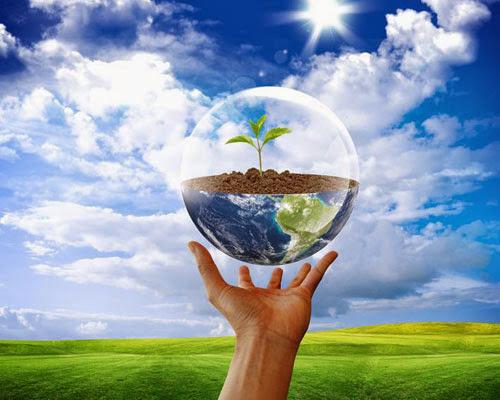 День защиты окружающей среды