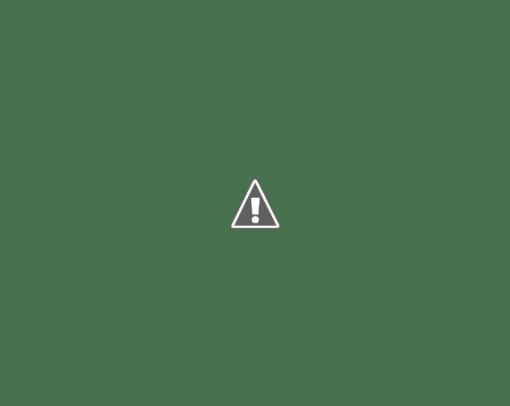 Você precisará de cola quente, estilete, uma lâmpada, uma garrafa d'água de cinco litros e as colheres descartáveis que deverão ser na quantidade suficiente para encobrir toda a garrafa.