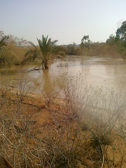 Jericho - נהר הירדן בחורף