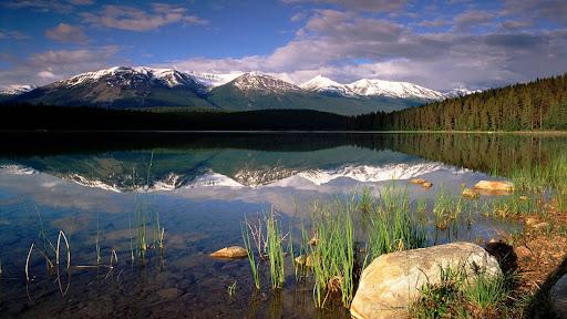 Patricia Lake, Jasper National Park, Alberta, Canada.jpg
