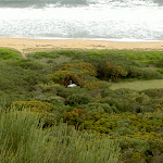 Tallow Beach Campsite from Hawke Head Drive (21152)