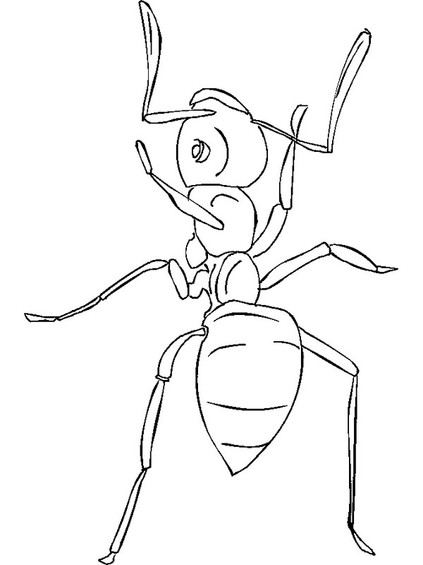 Free Ant Hill Coloring Pages