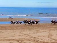 Asturias con niños: Carrera de caballos en la playa de Ribadesella