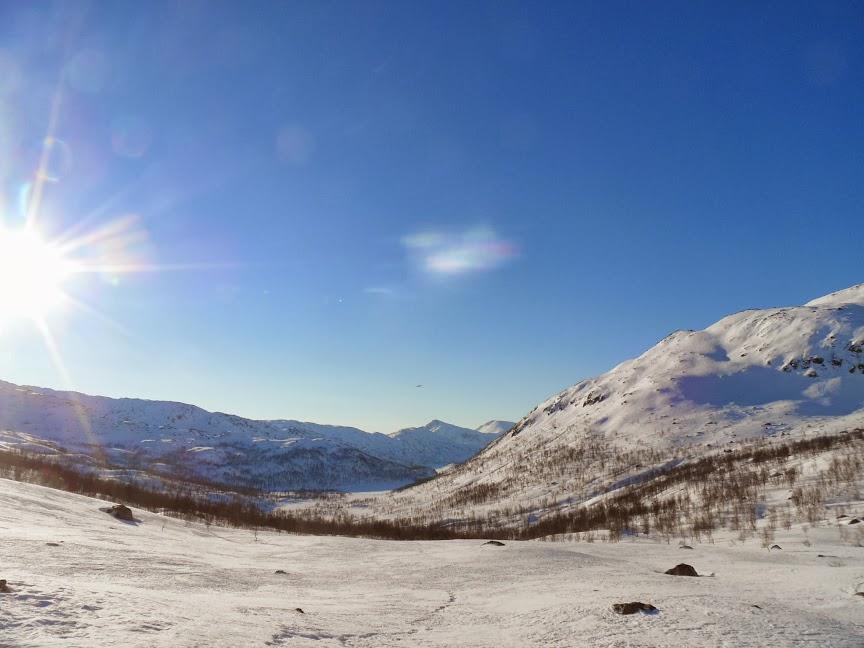Norvège mars 2014 SAM_1330