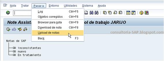 Subir notas a SAP