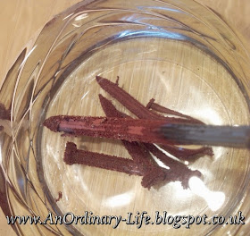 An Ordinary Life : Science: How to Copper plate Iron Nails!