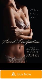 Sweet Temptation - erotic romance novels