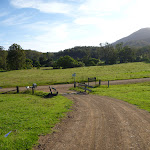 Near the Congewai Valley West trackhead (362114)