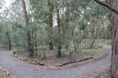 Wandinong Sanctuary