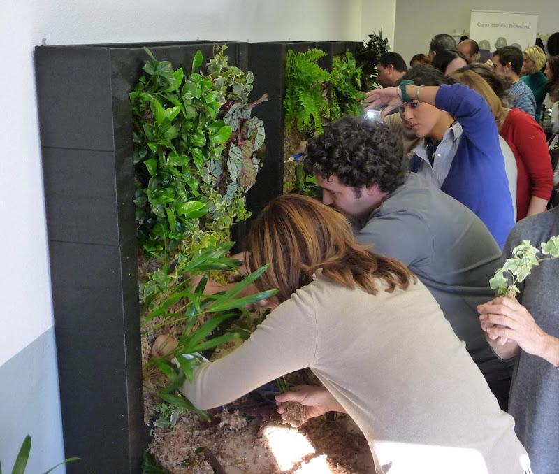 Curso formación jardines verticales jardinería jardín vertical curso de Jardines Verticales