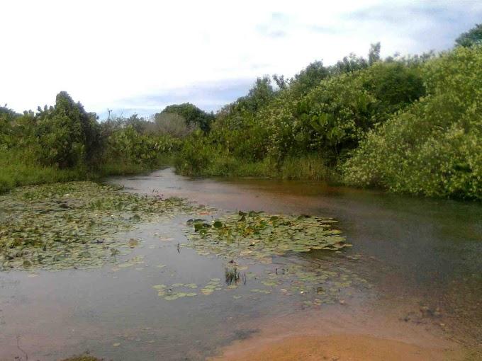 Natal: Comitê do Rio Pitimbu abre processo eleitoral para renovar seus membros