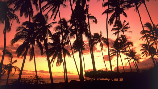 Hawaiian Sunset, Hawaii.jpg