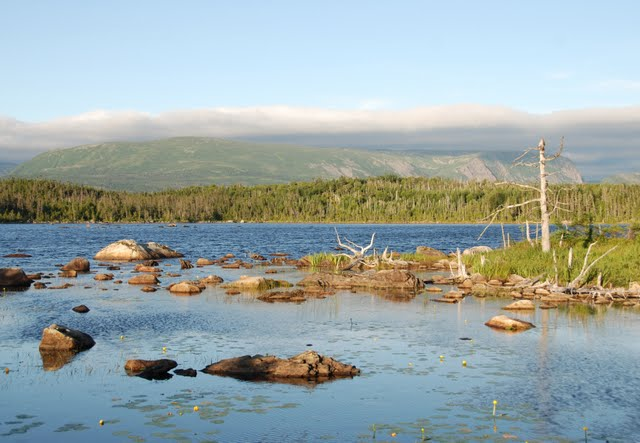 gros morne national park, berry hill