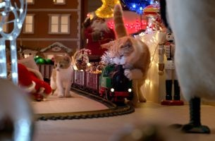 Cats Cause Christmas Chaos In Sweet New Temptations Commercial