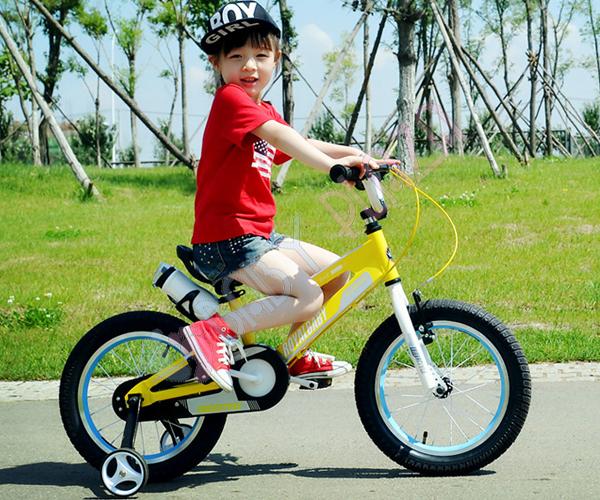 Xe đạp trẻ em Royal Baby RB12-17