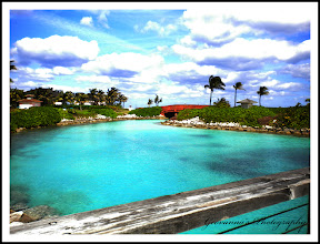 One of the many views of the Beautiful Island Atalntis/Bahamas