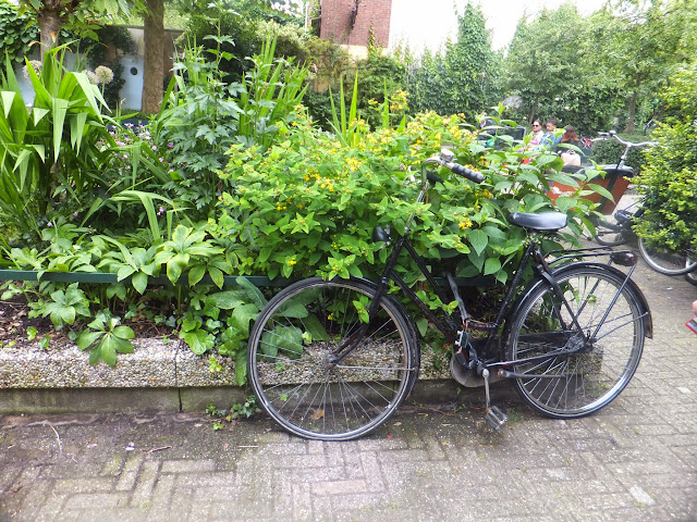 Jardins Intérieurs, Begijnhof, Amsterdam, elisaorigami, travel, blogger, voyages, lifestyle