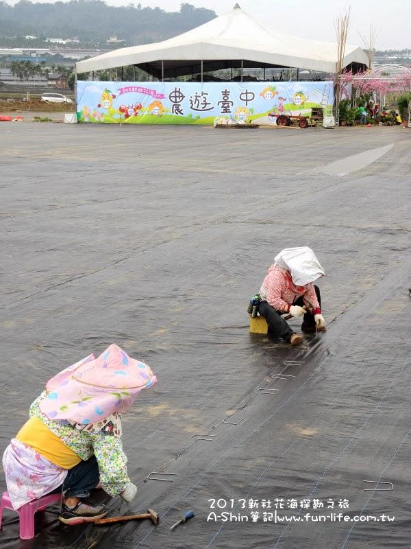 每個地方都要用長鐵絲固定好-2013新社花海節