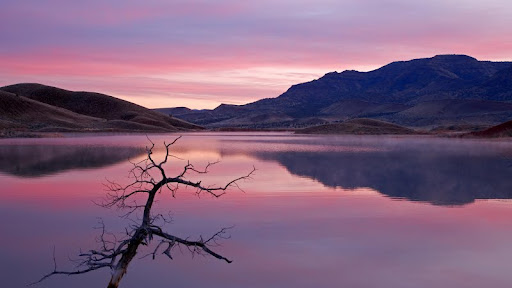 Serenity at Sunrise, John Day Fossil Beds National Monument, Oregon.jpg