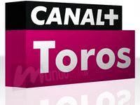 VER CANAL PLUS TOROS EN DIRECTO Y ONLINE LAS 24H FERIAS TAURINAS