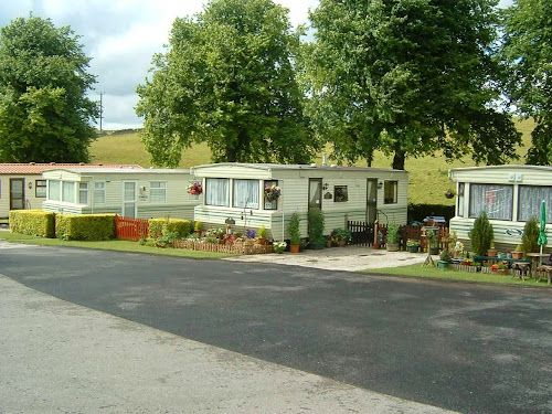 Camping  at Lime Tree Park Caravan Campsite