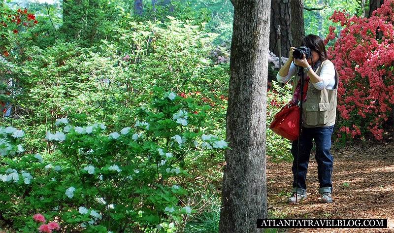 Atlanta parks 10 tips