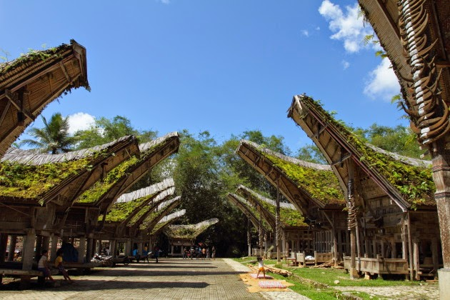 Inverted Boat shaped houses of Tana Toraja, Sulawesi, Indonesia