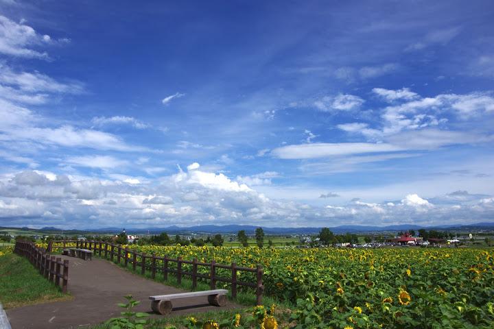 写真:大きな空